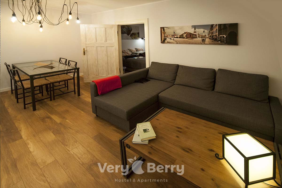 APKJ50 Apartamenty w centrum Poznania (11)