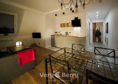 APKJ50 Apartamenty w centrum Poznania (12)