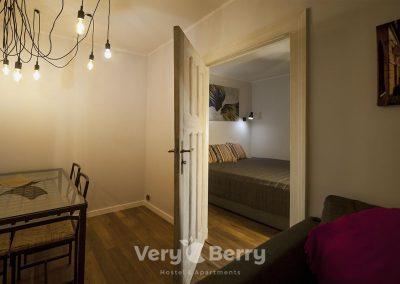 APKJ50 Apartamenty w centrum Poznania (3)