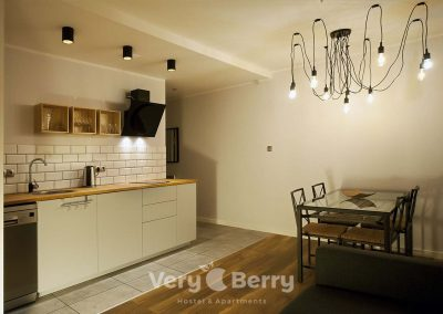 APKJ50 Apartamenty w centrum Poznania (4)
