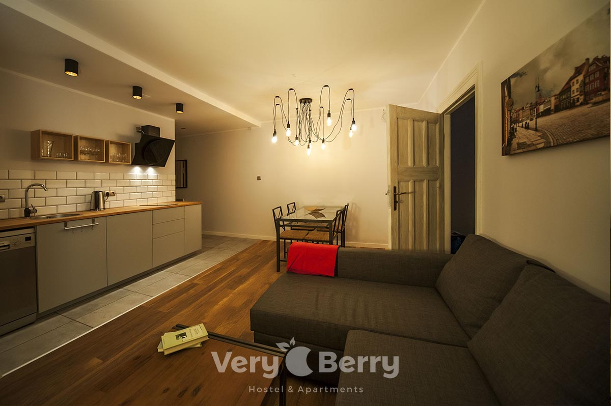 APKJ50 Apartamenty w centrum Poznania (9)