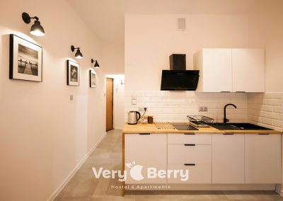 Apartament Stare Miasto - Rybaki 13 Poznan - Very Berry Apartments(23)