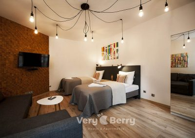 Apartament Stare Miasto - Rybaki 13 Poznan - Very Berry Apartments(26)