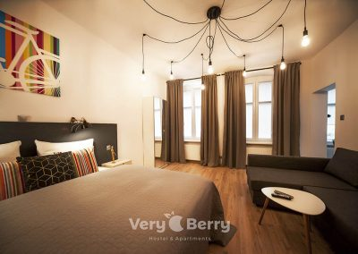 Apartament Stare Miasto - Rybaki 13 Poznan - Very Berry Apartments(27)