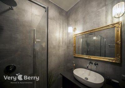 Orzeszkowej 10 - Very Berry Apartments Poznan - Rezerwuj Bezpośrednio (15)