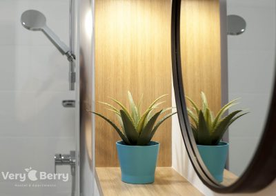 Zwierzyniecka 30 - Very Berry Apartments - Rezerwuj bezpośrednio (11)