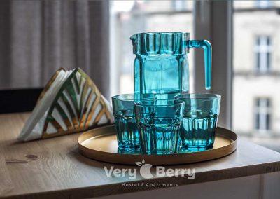 Zwierzyniecka 30 - Very Berry Apartments - Rezerwuj bezpośrednio (2)