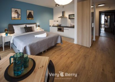 Zwierzyniecka 30 - Very Berry Apartments - Rezerwuj bezpośrednio (7)