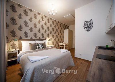 Apartament 3 - Śniadeckich 1 w Poznaniu - Very Berry Apartments (2)