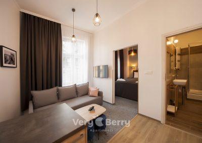 Apartamenty ul. Głogowska 39 Poznań blisko targów MTP Poznan i dworca PKP Poznań Główny- Very Berry Apartments (3)