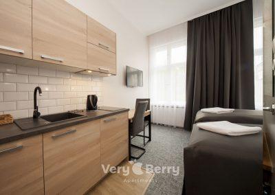 Apartamenty Poznań ul. Głogowska blisko targów MTP Poznan i dworca PKP Poznań Główny- Very Berry Apartments (3)